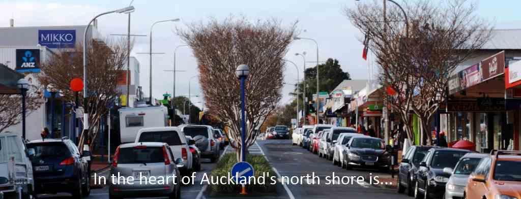 north shore auckland nz
